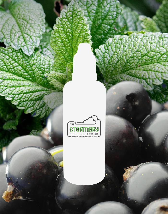 Cool Currant - Steam E-Juice | The Steamery