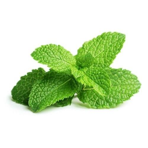 Capella Peppermint - Steam E-Juice | The Steamery