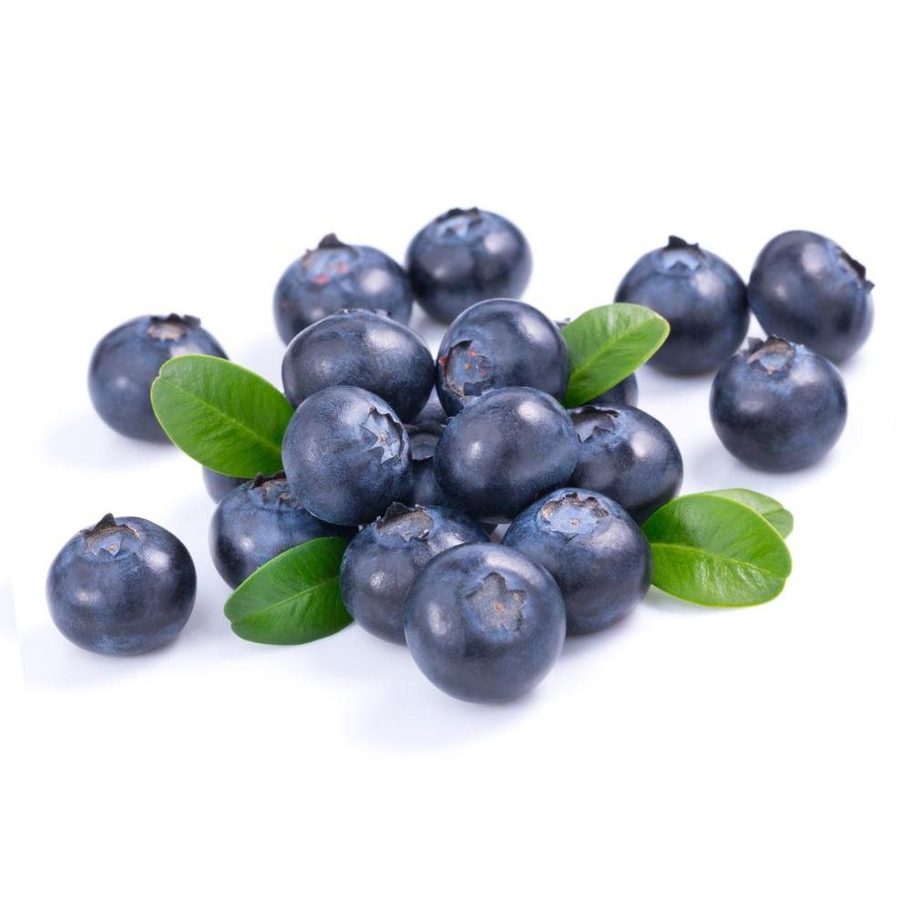 HS Blueberry - Steam E-Juice | The Steamery