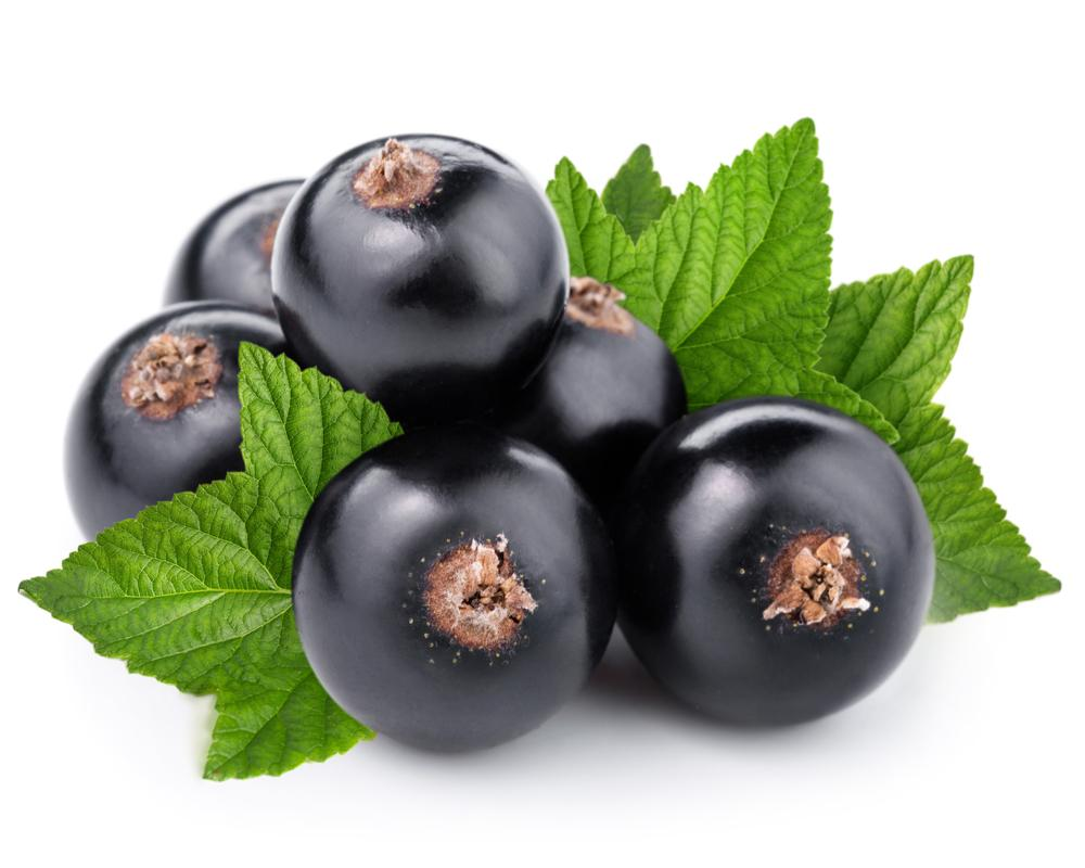 Capella Black Currant - Steam E-Juice | The Steamery